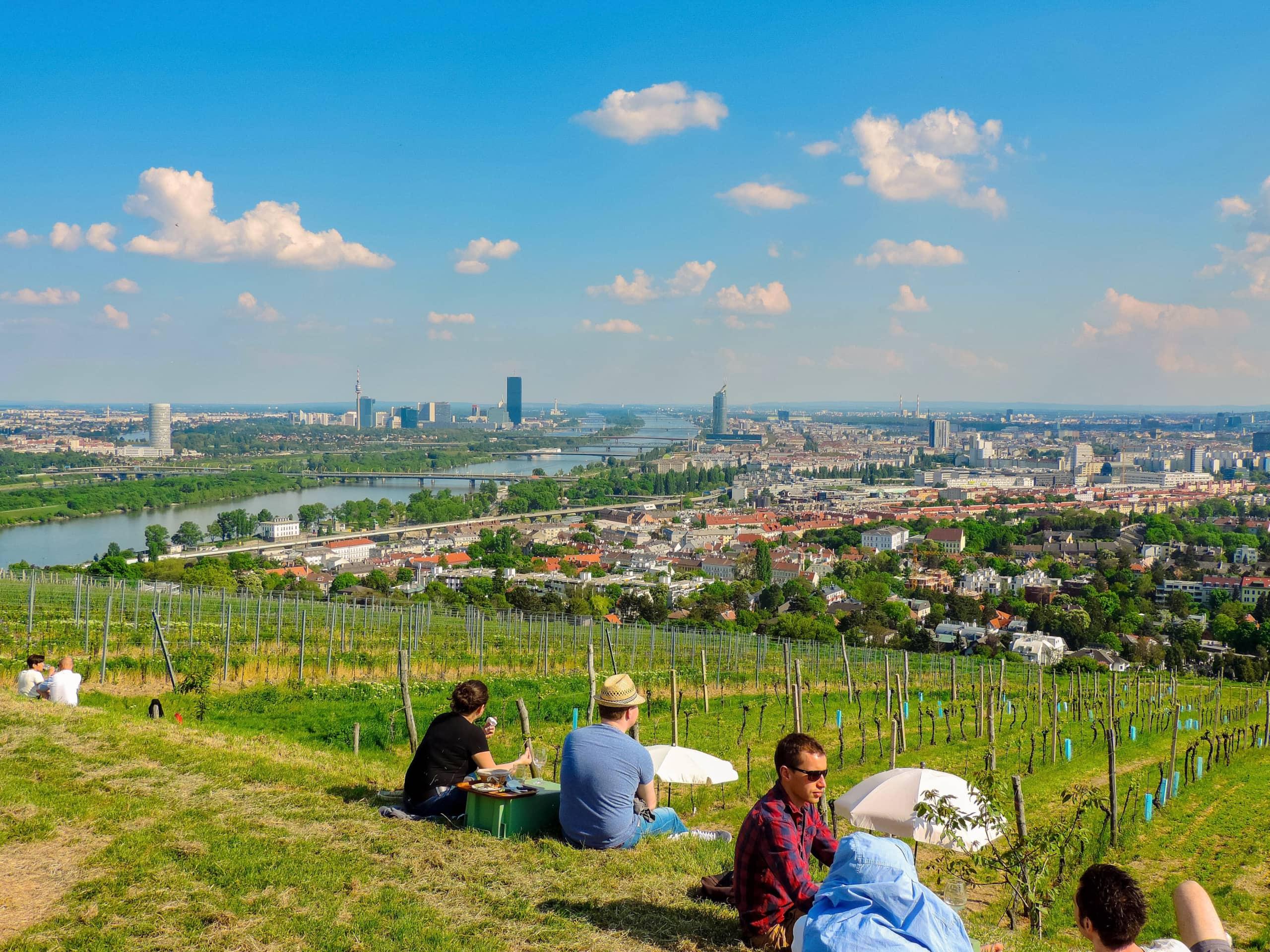 Menschen sitzen am Nussberg mit Blick über Wien.
